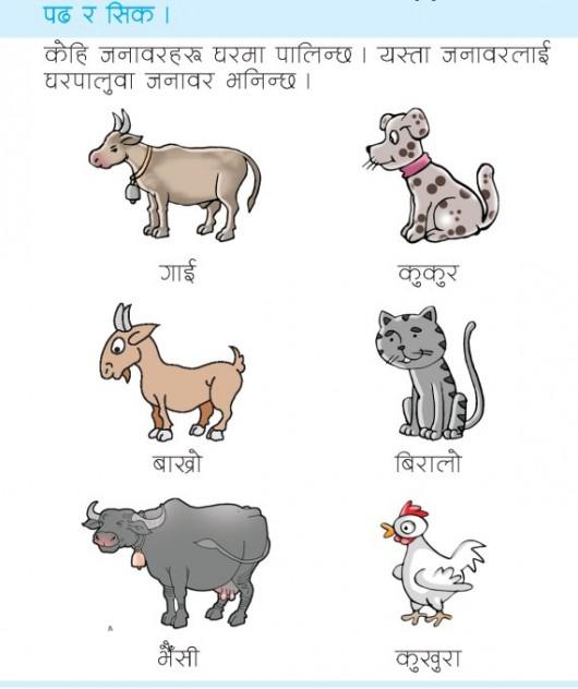 LKG-Nepali-Book_Page_71 17