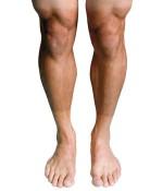 body parts-legs