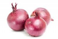 vegetable-onion